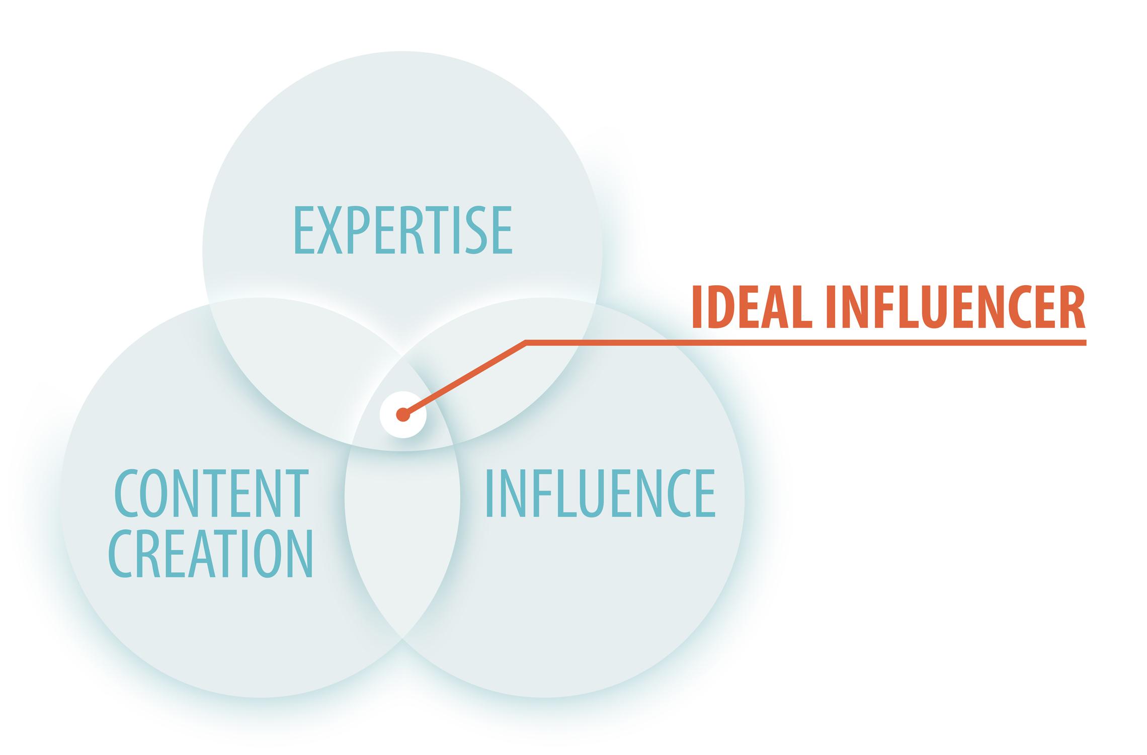 b2b influencer marketing - ideal influencer